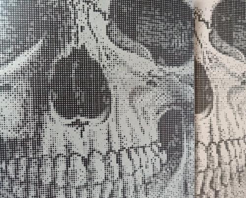 Skull2blog
